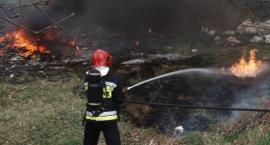Pożar w pobliżu byłego lotniska. Spłonęło 10 arów nieużytków
