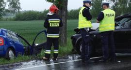 Smród przy ul. Szwoleżerów, wypadek w Gniewomirowicach [FILM]