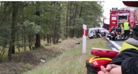 Śmiertelna czołówka na drodze krajowej nr 94  pod Kawicami