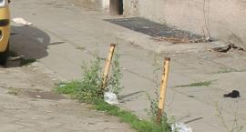 """Kto zbuduje """"Drogę w Sercu Miasta""""?"""