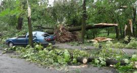 Smutna rocznica. Dziesięć lat temu w Legnicę uderzył huragan