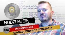 Kurs tworzenia stron w języku Python z legnickim youtuberem