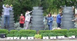 Gmina Legnickie Pole z grantem na projekt związany z sadzeniem roślin