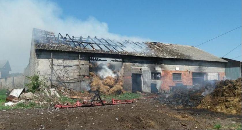Temida, Zbiersku paliło potęgę - zdjęcie, fotografia