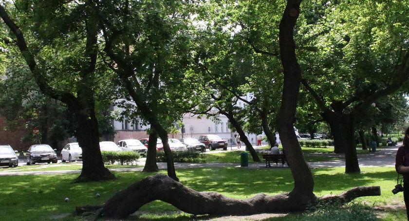 Miejski krajobraz, Zapraszają spacer Plantach - zdjęcie, fotografia
