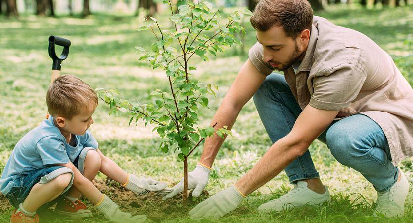Miejski krajobraz, Jedno dziecko jedno drzewo Kalisz ogólnopolskiej akcji Lasów Państwowych - zdjęcie, fotografia