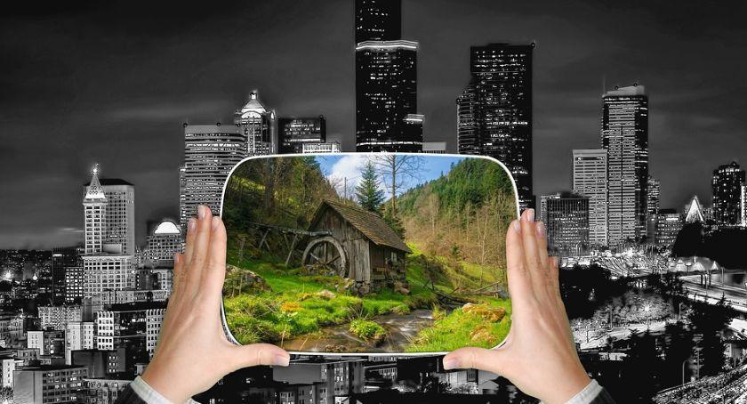 Miejski krajobraz, Zmagania Ratusza miejską zielenią - zdjęcie, fotografia