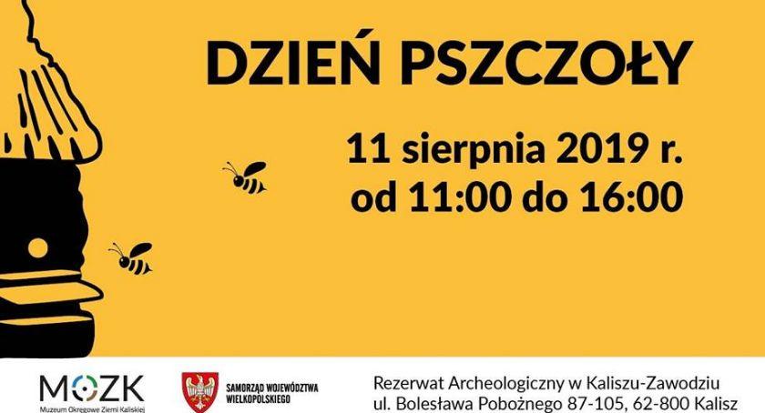 Atrakcje i Ciekawostki, niedzielę Dzień Pszczoły Zawodziu - zdjęcie, fotografia