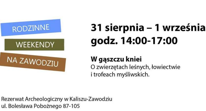 Atrakcje i Ciekawostki, gąszczu kniei Rodzinne Weekendy Zawodziu - zdjęcie, fotografia