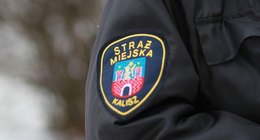 Prezydent, strażnicy miejscy reagują wskazania monitoringu - zdjęcie, fotografia