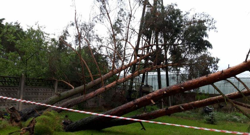 Pożary - interwencje Straży Pożarnej, Powalone drzewa uszkodzone budynki pozrywane dachy - zdjęcie, fotografia