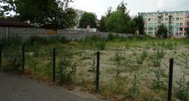 Przy ul. Staszica w Kaliszu kiedyś dziki parking a dzisiaj....zapuszczony plac