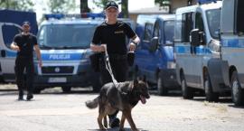 Kaliska policjantka i jej pies najlepsi w Wielkopolsce