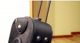 Lecisz samolotem - mamy pomysł jak zaoszczędzić na transporcie bagażu