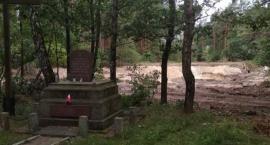 W Lesie Winiarskim powstają trzy zbiorniki wodne