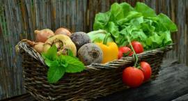 Jak uniknąć trucia ludzi nawozami. Spotkanie producentów warzyw w Pałacu Tłokinia