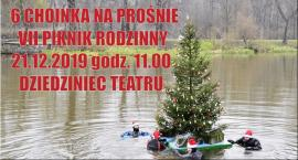 Choinka na rzece - jedyna taka w Polsce