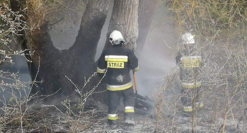 Akcja straży, Strażacy walczyli ogniem przez blisko godzinę Znowu podpalenie - zdjęcie, fotografia