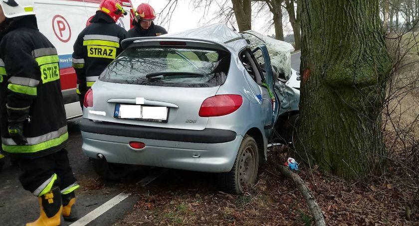 Interwencja, marcu drodze doszło śmiertelnego wypadku drzewa trzeba wyciąć - zdjęcie, fotografia