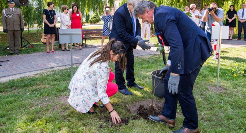 Newsy, Zasadź swoje drzewo Świeciu Wystarczy wskazać miejsce gdzie chcemy więcej drzew resztę zatroszczy urząd - zdjęcie, fotografia