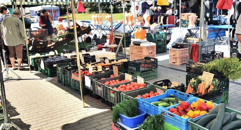 Warzywa, owoce, kwiaty, zioła, Warzywne plony będą połowę mniejsze - zdjęcie, fotografia