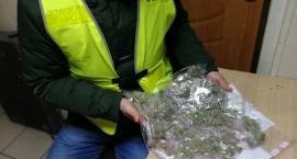 29-latek i 36-latek ze Świecia zatrzymani za posiadanie narkotyków