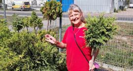 Jakie prace wykonać jesienią w ogrodzie? Specjaliści z Bricomarche doradzają
