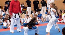 Anton Nikulin z Ukrainy poprowadził w Świeciu seminarium kumite [ZDJĘCIA]