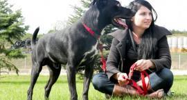 Pomogli już ponad 700 psom. Najczęściej takim, którymi nikt już nie chce się zajmować