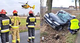 Samochód roztrzaskał się na drzewie, a kierowcę zabrał helikopter. Policjanci podejrzewają, co było przyczyną wypadku