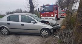 Wypadek w Niewieścinie. Kierowca trafił do szpitala