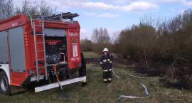 Strażacy ze Świecia ostrzegają przed wypalaniem traw. Jest ekstremalnie sucho, łatwo o katastrofę
