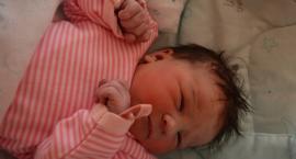 Hanna, Lena i Ziemowit. Zobaczcie maluszki, które urodziły się w świeckim szpitalu.
