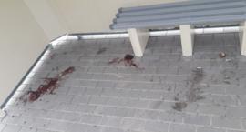 Kałuża krwi na przystanku autobusowym. Wiata jest też niszczona, ale urząd odpowiada, że nie można zamontować monitoringu