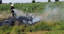 Pożar w Pruszczu. Strażacy gasili stertę drzewa