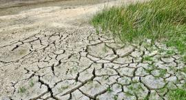 Susza nie tylko w rolnictwie. Czy zabraknie nam wody w kranach?
