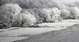 Pierwsze zimowe wejście na Diabelce. Spacer przyrodniczy z przewodnikiem