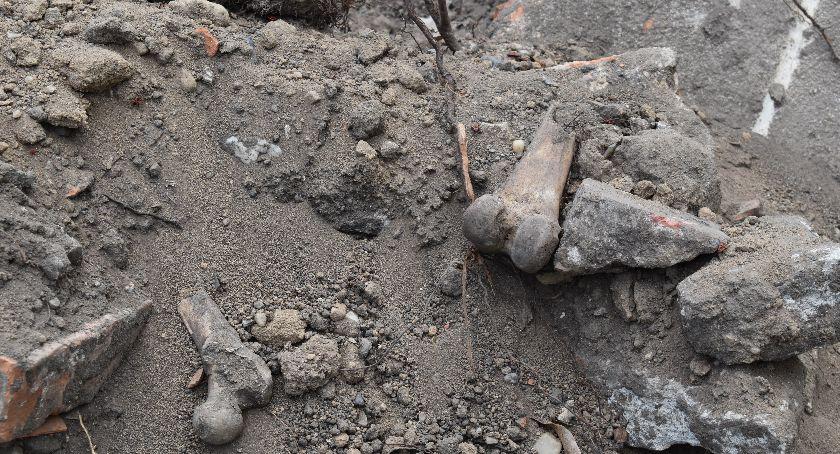 Policja , Odpadami zasypano cmentarz - zdjęcie, fotografia