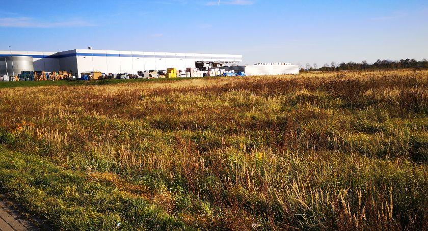 Burmistrz, Gmina sprzedaje teren market - zdjęcie, fotografia