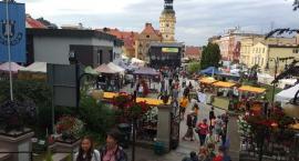 Kwiatowa stolica Polski