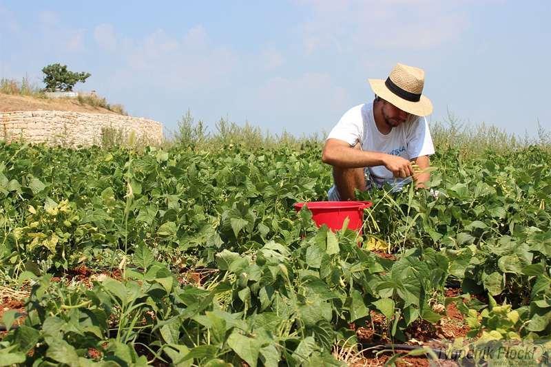 Gospodarka, Mężczyzna wyjeżdża pracy granicą - zdjęcie, fotografia