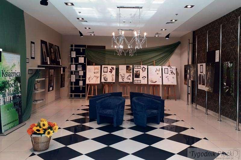 Wystawy, Wystawa Galerii Kreatywnej - zdjęcie, fotografia
