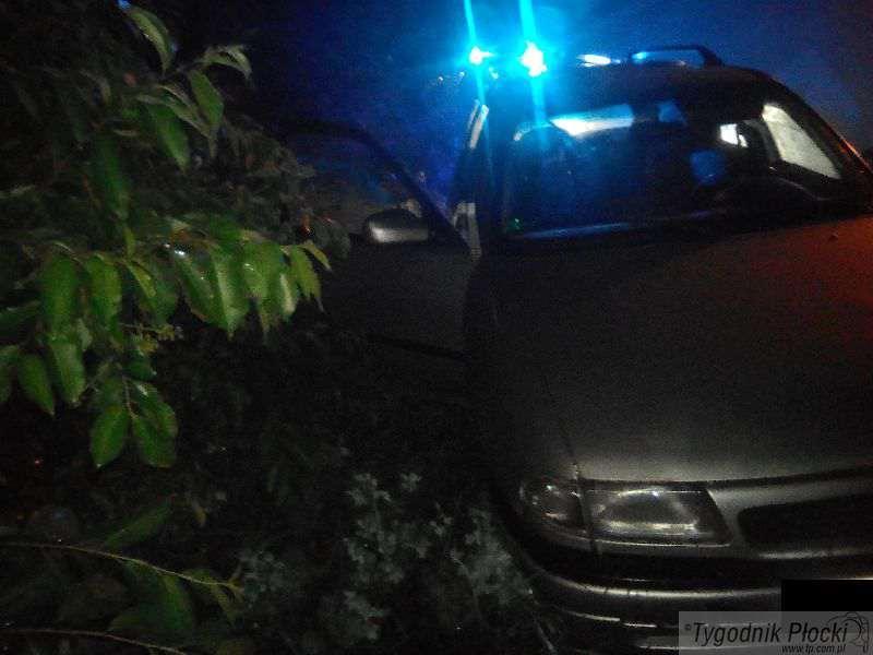 Aktualności, Pijany kierowca zakończył jazdę rowie - zdjęcie, fotografia