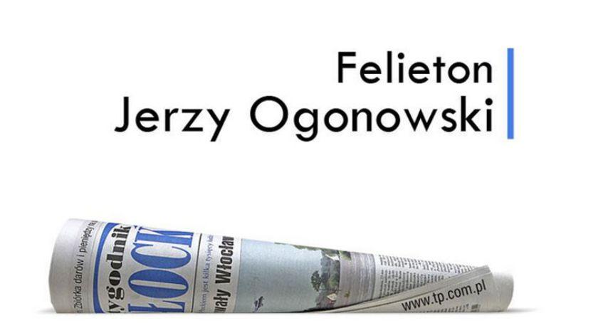 Felieton, Widziane kanapy - zdjęcie, fotografia