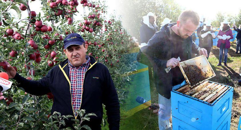 Śladami jabłek i pszczół