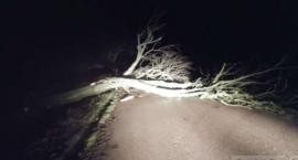 Powalone drzewa, uszkodzone dachy i linie energetyczne