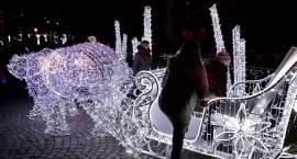 Płockie Ogrody Światła uroczyste rozświetlenie już w sobotę, 8 grudnia