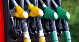 Czy warto korzystać z uszlachetniaczy paliwa?