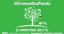 Posadź drzewo dla Polski