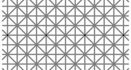 Ile czarnych kropek widzisz? Sprawdź !!!